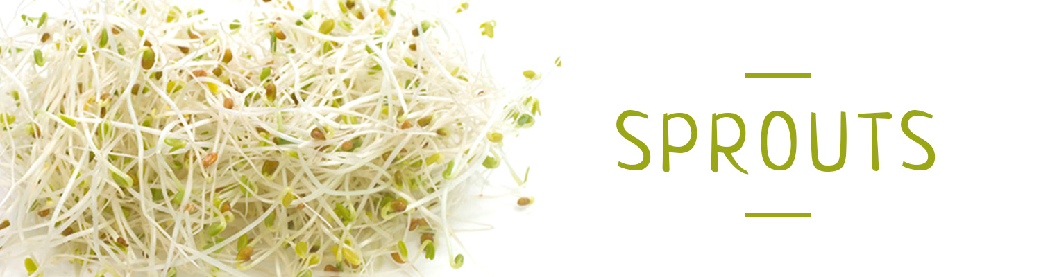 Product_Headers/Sprout.jpg