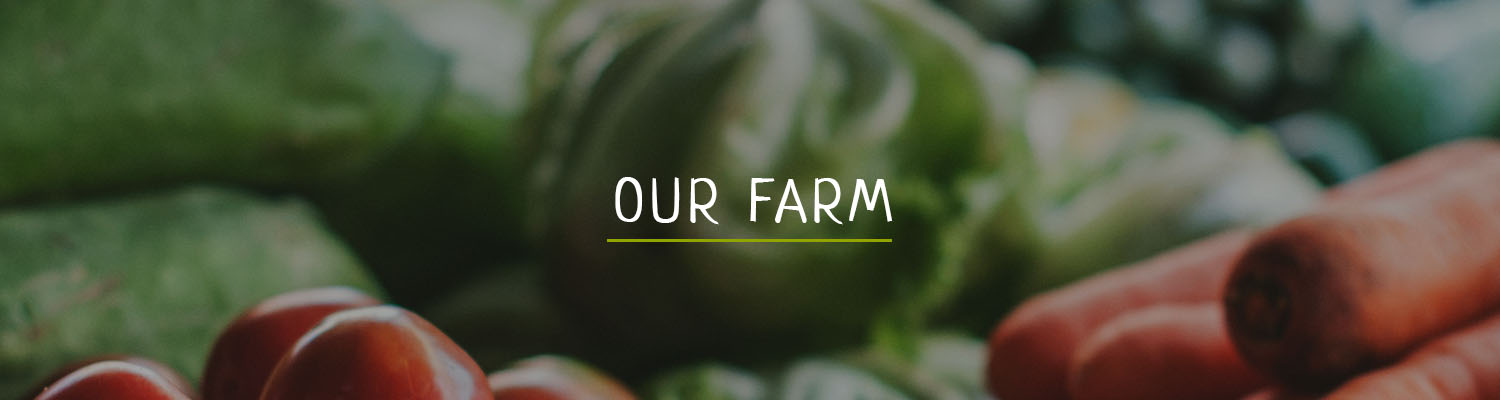Who_we_are/OurFarm.jpg